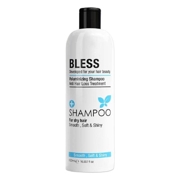BLESS DRY HAIR 500ML SHAMPOO.
