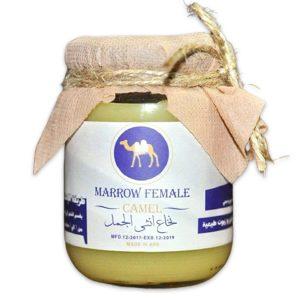 Marrow Female Camel